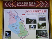 凍頂烏龍與孟宗竹的故鄉:R0012127.jpg