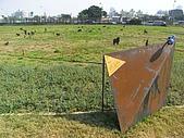 2008鋼雕藝術節:R0020471.jpg