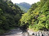 大井川之八橋小道:R0017482.jpg