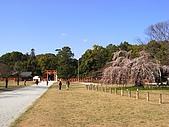 京都洛北鞍馬貴船上賀茂:RIMG0206.jpg