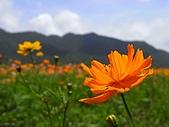 海角三號之滿洲鄉:RIMG0078.jpg