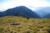 北一段縱走day3-南湖大山東峰、馬比杉山:DSC_0486.JPG