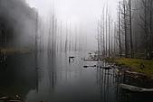 水漾森林、鹿屈山、鹿屈山前峰:DSC_0301.JPG