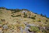 北一段縱走day3-南湖大山東峰、馬比杉山:DSC_0487.JPG