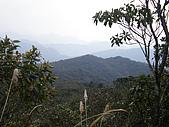 獅子頭山:P2160086.JPG