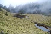 北一段縱走day3-南湖大山東峰、馬比杉山:DSC_0505.JPG