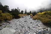 北一段縱走day3-南湖大山東峰、馬比杉山:DSC_0507.JPG