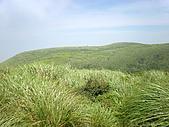 磺嘴山四稜、翠翠谷:P6220157.JPG