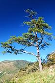 北一段縱走day1-勝光山、多加屯山:DSC_0025.JPG