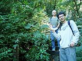 白雞山雞罩山縱走:P1200146-1.JPG