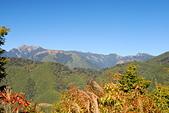 北一段縱走day1-勝光山、多加屯山:DSC_0029.JPG