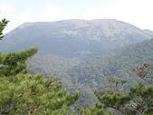 火燒山、面天山、向天山:P1060466.JPG