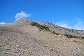 北一段縱走day3-南湖大山東峰、馬比杉山:DSC_0528.JPG