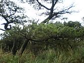 菜公坑山、巴拉卡山:P2170216.JPG
