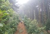 平岩山踏勘:DSC00268.JPG