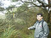 菜公坑山、巴拉卡山:P2170257.JPG