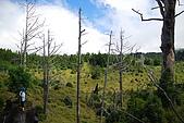 散落山中的珍珠-加羅湖群:DSC_0134.JPG