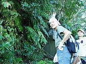 白雞山雞罩山縱走:P1200256-3.JPG