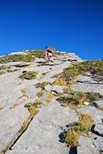 北一段縱走day3-南湖大山東峰、馬比杉山:DSC_0435.JPG