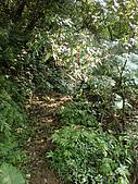 烘爐山、二子山東峰、二子山西峰:P3080003.JPG