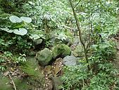 烘爐山、二子山東峰、二子山西峰:P3080006.JPG