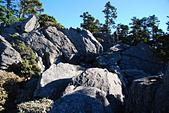 北一段縱走day3-南湖大山東峰、馬比杉山:DSC_0468.JPG