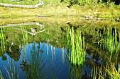 再訪南湖北稜上的珍珠-加羅湖:DSC_0186.jpg