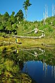 再訪南湖北稜上的珍珠-加羅湖:DSC_0195.jpg