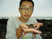 北海岸抓螃蟹:PA140141.JPG