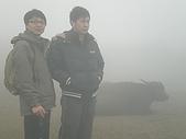 擎天崗山、竹篙山:P3090037.JPG