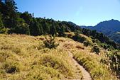 北一段縱走day2-審馬陣山、南湖北山:DSC_0153.JPG