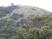 火燒山、面天山、向天山:P1060429.JPG