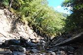 北一段縱走day6-中央尖溪、南湖溪、賦歸:DSC_0932.JPG