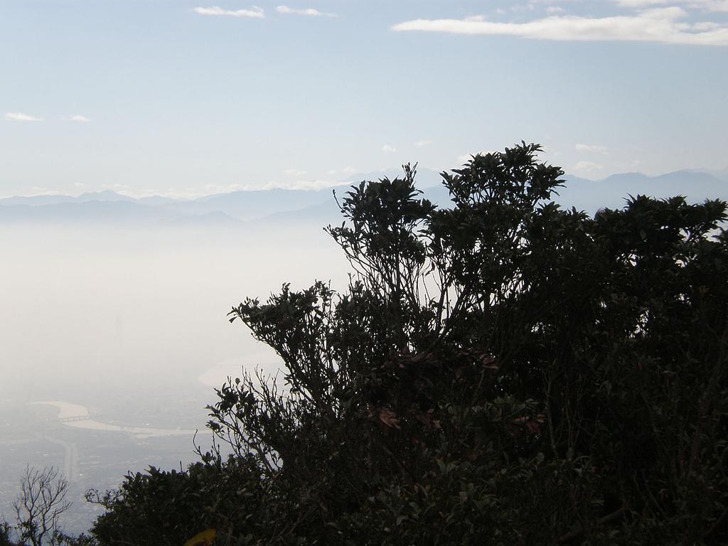 火燒山、面天山、向天山:P1060433.JPG