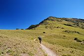 北一段縱走day2-審馬陣山、南湖北山:DSC_0176.JPG
