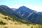 北一段縱走day2-審馬陣山、南湖北山:DSC_0178.JPG