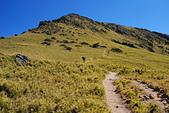 北一段縱走day2-審馬陣山、南湖北山:DSC_0181.JPG