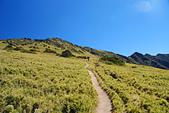 北一段縱走day2-審馬陣山、南湖北山:DSC_0185.JPG
