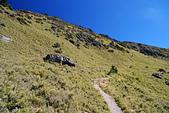 北一段縱走day2-審馬陣山、南湖北山:DSC_0192.JPG