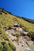 北一段縱走day2-審馬陣山、南湖北山:DSC_0194.JPG