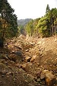 水漾森林、鹿屈山、鹿屈山前峰:DSC_0036.JPG