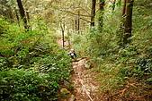 水漾森林、鹿屈山、鹿屈山前峰:DSC_0053.JPG