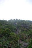 烏岩角斷崖:DSC_0229.JPG