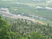金針山上遠眺:DSCF1606.JPG