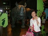 國立史前文化博物館 :DSCF0556.JPG