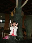 國立史前文化博物館 :DSCF0558.JPG