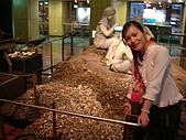國立史前文化博物館 :DSCF0563.JPG