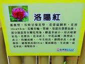 龍潭山岳協會杉林溪會慶2013/03/24:DSC08720.JPG