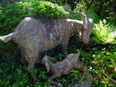 再訪 水漾森林 凋亡之美 2013/09/07/08....2天:DSC04347.JPG
