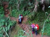 再訪 水漾森林 凋亡之美 2013/09/07/08....2天:DSC04376.JPG